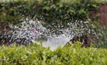 sprinkler system installation, sprinkler system repair, drip irrigation, irrigation system installation, irrigation system repair, dallas tx